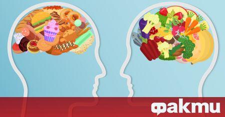 Човешкият мозък е смятан от учените за най-сложната позната ни