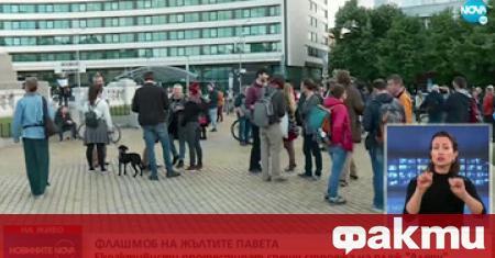 Протест в защита на българската природа събра снощи десетки граждани