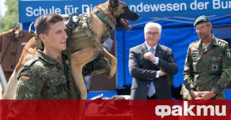 Служебни кучета от германската армия ще бъдат обучавани да надушват
