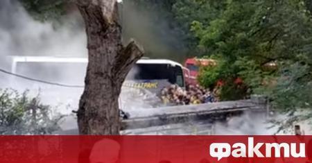Фенове на Ботев (Пловдив) се биха с полицаи снощи в