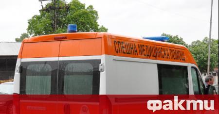 40-годишна жена е загинала след пътен инцидент в град Петрич,