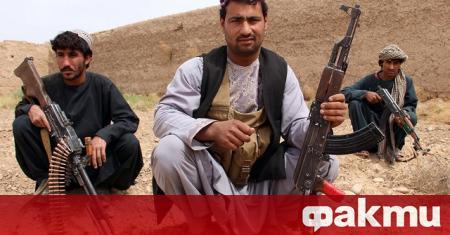 Талибаните в Афганистан обявиха едностранно прекратяване на огъня в продължение
