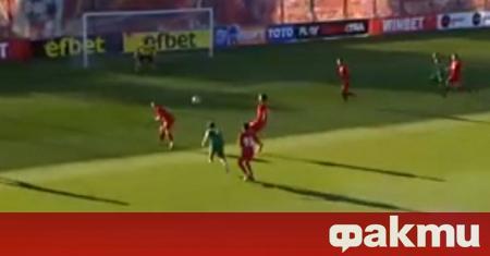 Ботев (Враца) ще играе и през следващия сезон в Първа