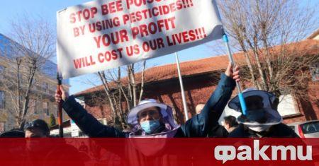 Пчелари от цялата страна излязоха на протест пред земеделското министерство