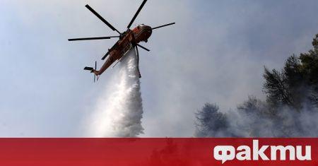 В Гърция са избухнали над 50 пожара. Високите температури и