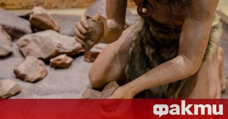 Археолози са открили останките на девет неандерталци при разкопки на