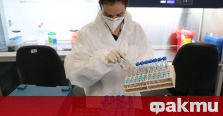 Обединеното кралство може да одобри и разпространи коронавирусна ваксина