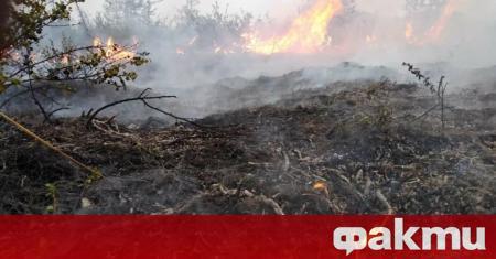 Рекордно високите температури в Сибир предизвикаха невиждани пожари. Огнеборците са