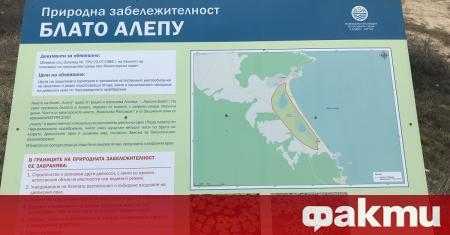 Предлагаха се по 5 хиляди евро на общински съветници през