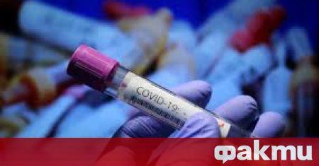 624 са случаите на новозаразени с коронавирус през последните 24