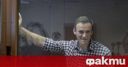 Руският опозиционер Алексей Навални, който излежава присъда в наказателна колония,