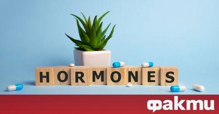 Човешките хормони се променят със сезоните, макар и колебанието им