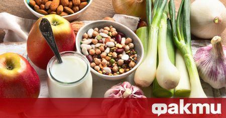 Учени от Испания заявиха, че определени храни могат да помогнат
