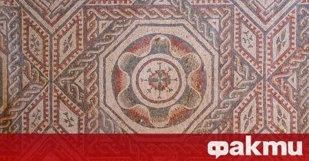 Археолози откриха идеално запазени римски мозайки под лози в Северна