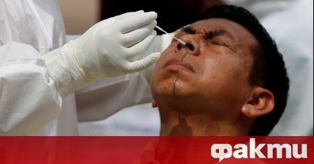 Частни хондураски компании обявиха, че със съгласието на правителството ще