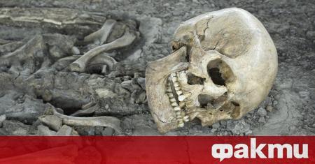 Китайска пандемия загробва България през втората половина на 14-и век.
