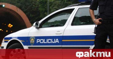 Германски турист, заподозрян в убийство на кучето си с чук,