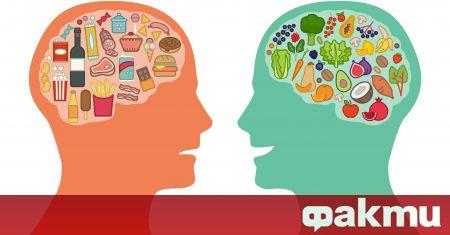 Мозъкът е може би най-важният орган в нашето тяло. Той