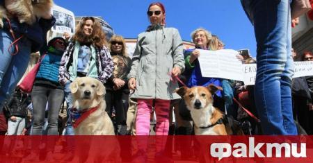 Протест срещу насилието над животни ще се проведе от 13:30