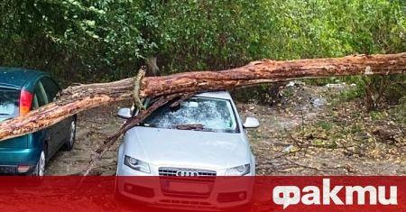 Кратка, но силна буря нанесе материални щети и затрудни нормалния