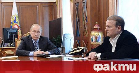 В имуществената си декларация украинският депутат Виктор Медведчук е вписал