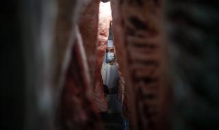 Хиляди източноевропейци мизерстват, за да е евтино месото в Германия
