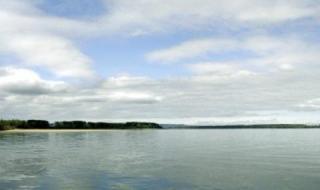 Забраниха къпането в Дунав в Силистренско
