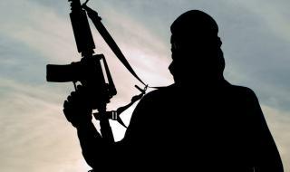 Осъдиха на 10 г. швейцарски терорист