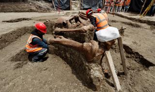 Откриха най-голямото гробище на мамути