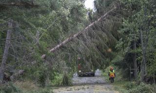 80 000 домакинства във Финландия са без ток заради мощна буря (ВИДЕО)