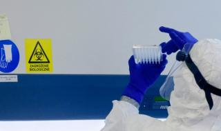 СЗО: Броят на заразилите се с коронавирус в света доближава 373 000 души