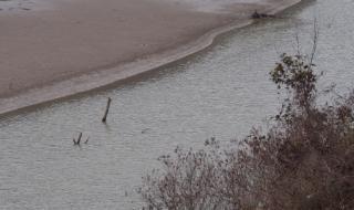 Откриха трупа на 57-годишен мъж от Айтос в Луда Камчия