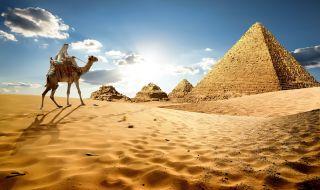 """""""Росатом"""" ще обучи 1700 египетски специалисти - 1"""