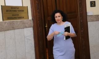 Танева: Изпратените до ЕП видеозаписи от