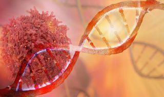 Онколози откриха как да разпознаем рака навреме