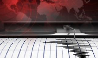Земетресение от 7,3 по Рихтер край Папуа Нова Гвинея