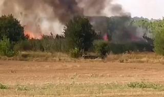 """Пожарът в Харманлийско затвори част от АМ """"Марица"""""""