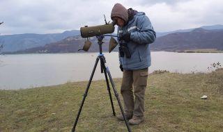 Над 1500 птици от 21 вида са преброени в Източните Родопи