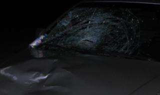 Шофьор блъсна две жени край село Чешнегирово, едната почина