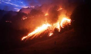 Голям пожар избухна край Петрич