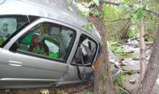 Трагедия! 20-годишен шофьор се заби в дърво и загина в Добричко