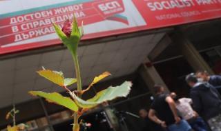 Националният съвет на БСП прие отчетните документи с голямо мнозинство