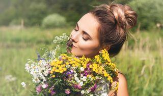 Ето кои билки се берат през май и за какво помагат