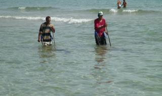 Забранява се уловът на бели пясъчни миди в Черно море