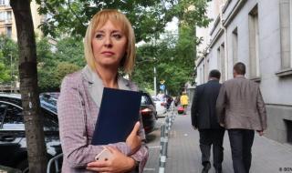 Мая Манолова иска касиране на вота в София