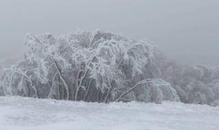 В България заваля сняг, ето къде