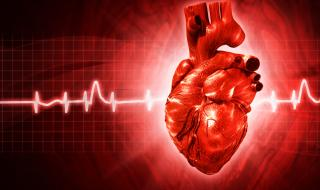 4 продукта, които убиват сърцето ви (ИНФОГРАФИКА)