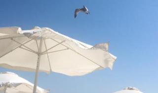 Кои са най-скъпите плажове по Черноморието (КАРТА)