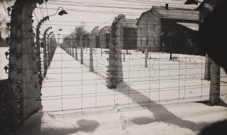 Какво преживях в Аушвиц. Записките на 14-годишната Шайнди.