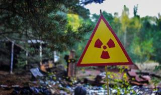 Стана ясно от къде са отпадъците край Червен бряг